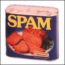 Spammy Spammy Spam Spam
